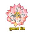 Sharddha TV